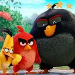 Злые Птички: Отважная Команда