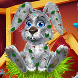 Кролик в гостях у Маши