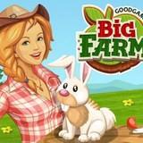 Большая Ферма для Девочек