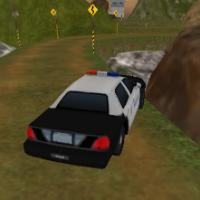Грузовой транспорт полиции