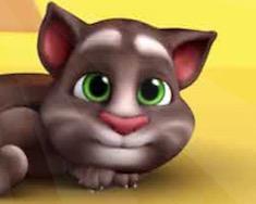 Кот Том онлайн раскраска