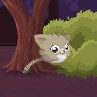 Прыгающий котик