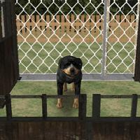 Симулятор собачих забегов