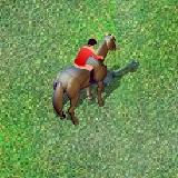 Лошади Конкур