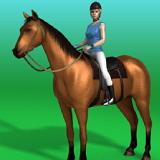 Скачки на Лошадях 2
