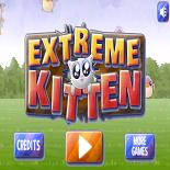 Экстремальный Кот