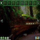 Побег из Древнего Леса