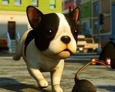 Симулятор Собаки